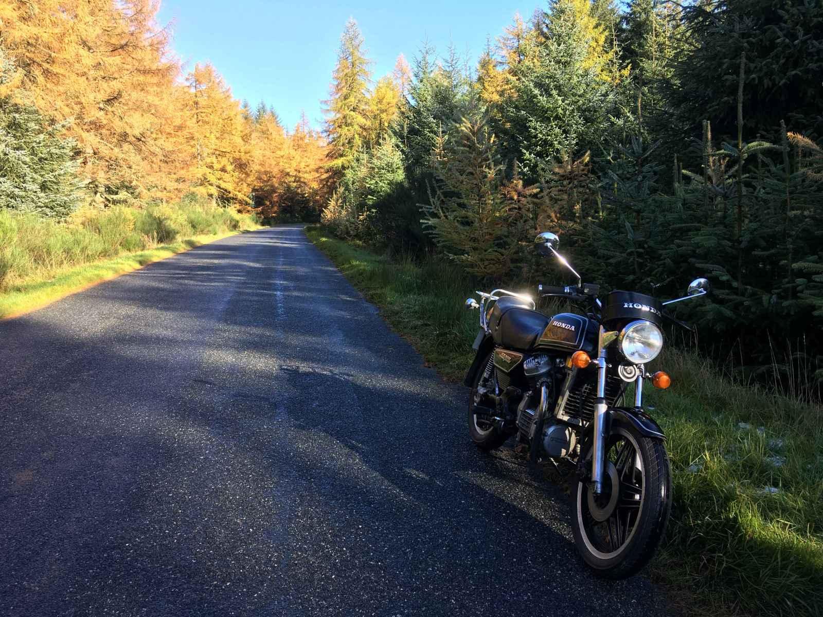 Aberdeenshire in November
